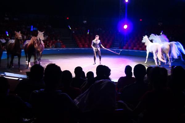 2013.07 Circo DSC09865