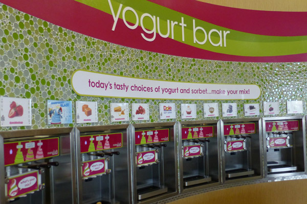 The choices in frozen yogurt change daily.