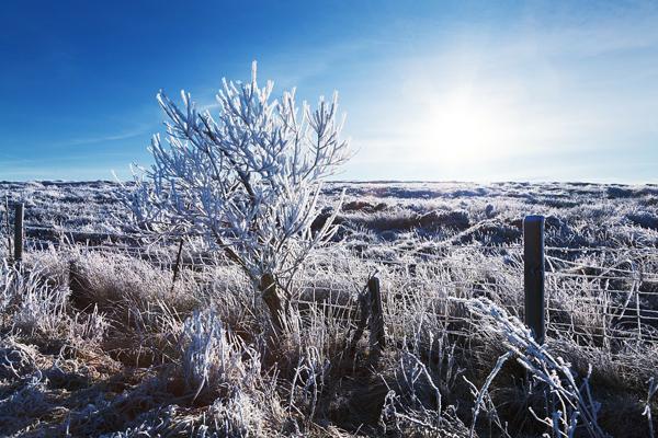 Winter freeze hits Houston