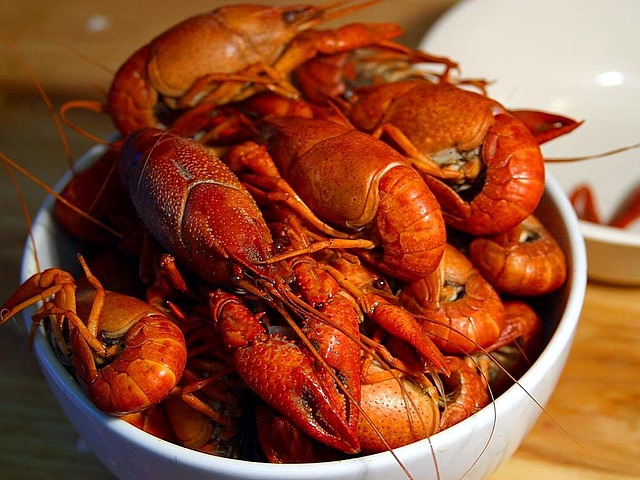 2015 Texas Crawfish & Music Festival on April 24-26 & May 1-3, 2015