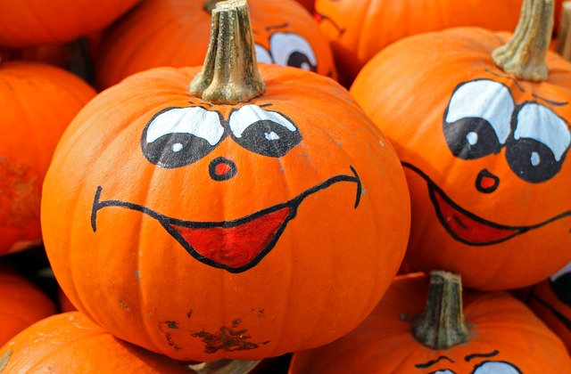 16th Annual Boo Bash at Traders Village Houston on Saturday, October 31, 2015