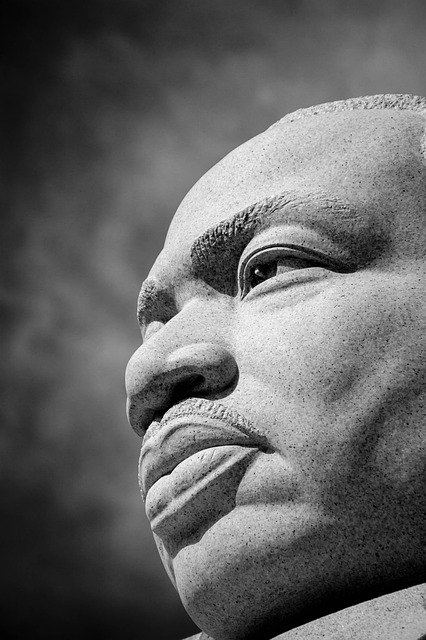 MLK Grande Parade 2016 on Monday, January 18, 2016