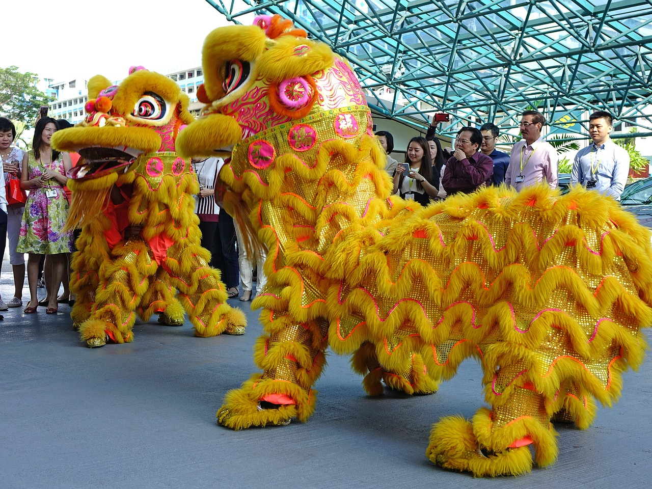 2016 Lunar New Year Celebrations in Houston